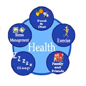 Essay about your health